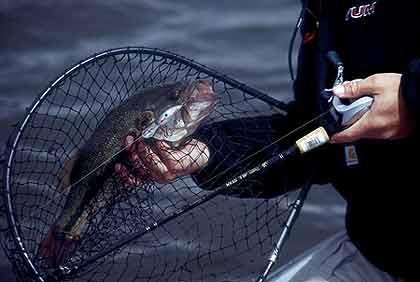 Spotlight On Cecil M. Harden Lake Bass
