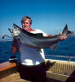 Lake Michigan Fishing Forecast