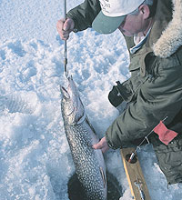 Ice fishing picks in indiana 6 best bets for Ice fishing indiana