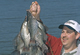 Our State's Hottest Crappie Lakes