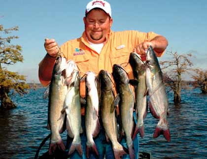 On southwest Louisiana's Calcasieu and Sabine lakes, there is now a near-perfect opportunity to tap into a redfish feeding frenzy. Stop what you're doing, and get on the water now! (April 2009)