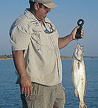 Up And Down The Coast: Big Bayou State Trout