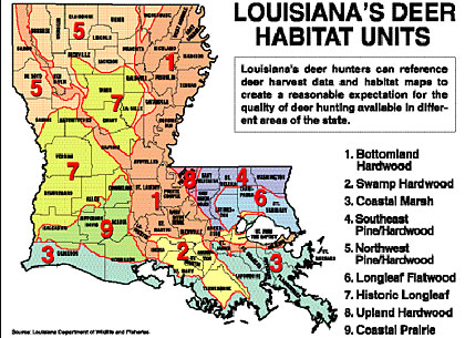 2008 Louisiana Deer Outlook Part 1 Our Top Hunting Areas
