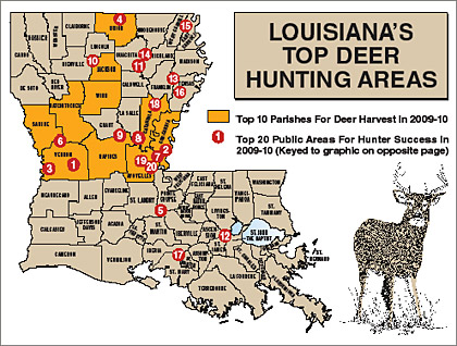 Louisiana's 2010 Deer Outlook -- Part 1