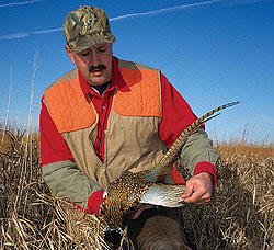 With population cycles on the upswing and strong responses to better -- and more plentiful -- habitat, 2009 is shaping up to be an excellent year to sample Michigan's upland opportunities. (October 2009)