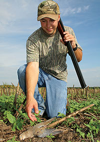 With opening day fast approaching, here's what Missouri shotgunners can expect when they hit the dove fields this month. (September 2009)