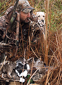 Show-Me State waterfowlers have options in all four corners of the state this year. Check out these four superb duck hunts for some fast action this season. (November 2008)