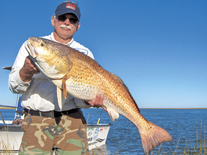 You don't need a cow pony for this roundup. But to handle the bull redfish on the Magnolia State coast, you're going to need some seriously stout fishing tackle! (August 2006)