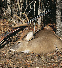 "Mississippi hunters on muzzleloading trips this month can take advantage of a ""December Double"" by bagging a deer and a wild hog. Here's where the action is! (December 2005)"