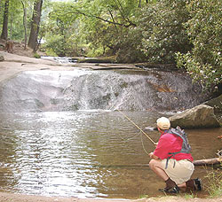 hotspots for north carolina trout
