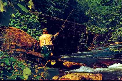 These five trout-fishing spots in the Great Smoky Mountains National Park provide some of the finest fishing for wild trout east of the Rockies. (April 2010)