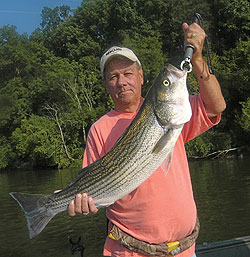 May is prime time to visit Jordan Lake and sample some of its surprisingly good fishing for striped bass. (May 2010)