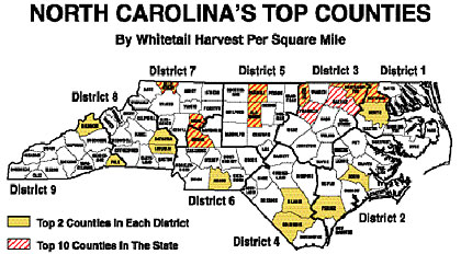 Here's a region-by-region forecast of the best places in North Carolina in which to get a deer, based on data from the NCWRC. (October 2008)