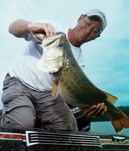 What's in store for New England's bass anglers in 2008? This overview offers you all the details! (April 2008)