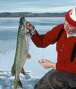 New York's January Ice-Fishing Bonanza