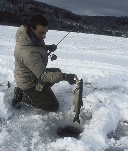 Where can you find some great winter fishing for trout, bass and other popular species near you this month? (January 2008)