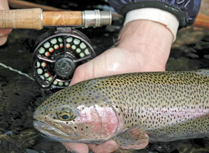 These proven western-region trout streams are the place to be for hot early-season action. Our expert has the lowdown on where to go this month. (April 2007)