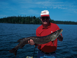 If you're looking for lunker northerns in the 20-pound class, New York's Region 5 is the place to be in July. Here's where to find some hot pike action this month. (July 2006)