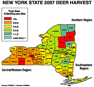 New York39s 2008 Deer Outlook  Part 1 Where To Find Our