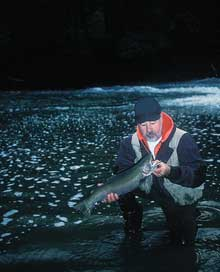 Our Finest Winter Steelhead Rivers