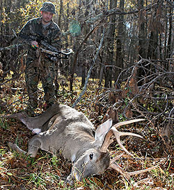 Try these popular public lands in eastern Ohio for some great early-season bowhunting action in 2009. (September 2009)