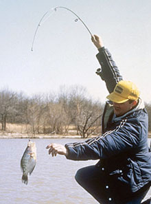 Chill-Out Crappie