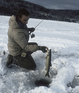 Pennsylvania 39 s 2008 winter trout outlook for Pa fish stocking