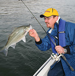 Huntingdon County's Raystown Lake offers excellent hybrid fishing as well as being possibly the state's top striper fishery (May 2010)