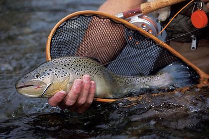 Pennsylvania's Finest Western Region Trout Waters
