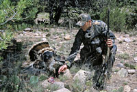 Yet another spring in which hunters may take two gobblers marks the success of New Mexico's turkey management plan. Here are three places you should try this year.
