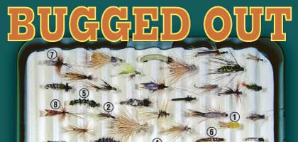 If you bring patterns to imitate the three stages of caddis flies' life cycle, you'll catch more trout this summer.