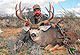 The Rocky Mountain mule deer is the king of the hills. But Arizona hunters are looking south of