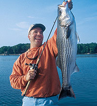 Much of South Carolina's best striped bass fishing comes from the state's five largest reservoirs. (January 2006)