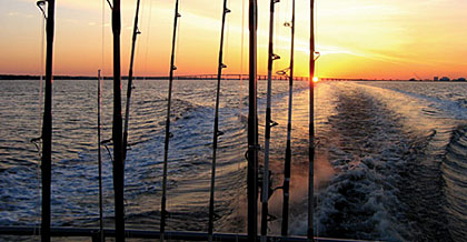 Five Best Bets For Carolina Saltwater Fishing
