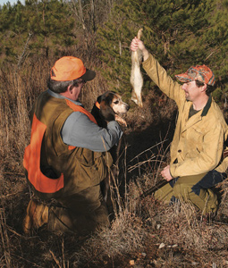 If all of your hunting is out of a deer stand, it might be time for you to start taking advantage of the bountiful small-game populations and hunting opportunities in South Carolina. (December 2007)