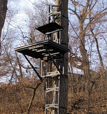 The Tops In Tree Stands