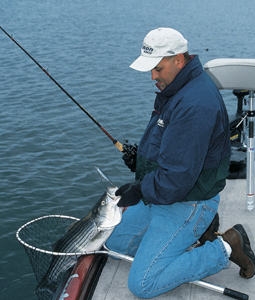 3 Great Winter Striper Fisheries In Tennessee