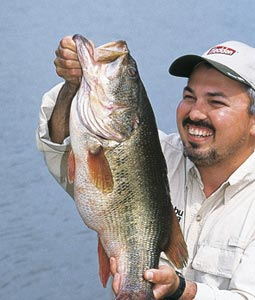 4 Hot Lakes For Black Bass In Tennessee