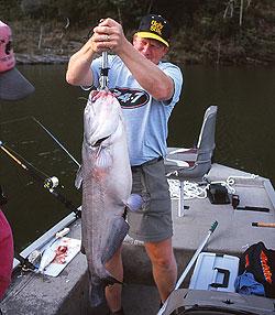 Catfishin' Near Knoxville & Nashville