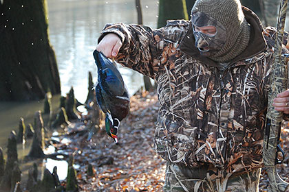 Tennessee's Close-To-Home Duck Hunting