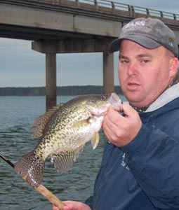Those would be Sam Rayburn and Toledo Bend, no doubt: each loaded with crappie, each offering plenty of hot places to find them in. These are just a few of those sites. (February 2007)