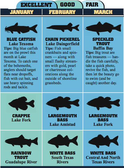Texas 2008 fishing calendar for Fishing calendar texas