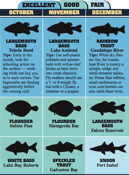 Texas' 2008 Fishing Calendar