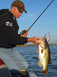 The best bass lakes in texas for Best bass fishing lakes in texas