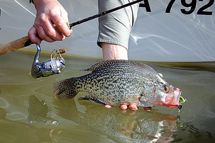 2 Virginia Hotspots For Crappie