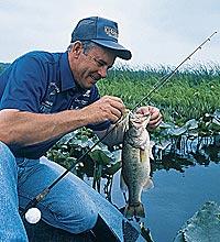 Three Hotspots For Virginia Dog-Day Bass