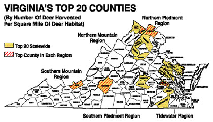 Last year, Virginia hunters killed a record number of deer. Here's where the data says the best hunting is. (October 2008)