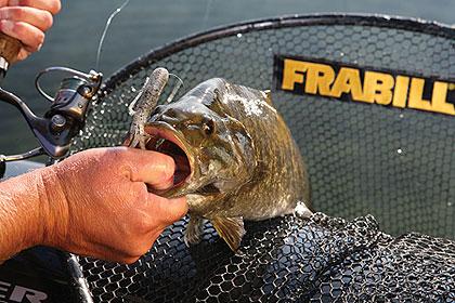 2010 Wisconsin Fishing Calendar