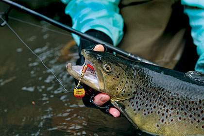 5 trophy trout lakes in our state for Trout fishing in wv