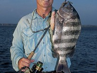 Author Mike Marsh with a big sheepshead caught from classic cover: dock pilings. Photo courtesy of Mike Marsh.